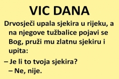 VIC DANA: Plemenite pobude